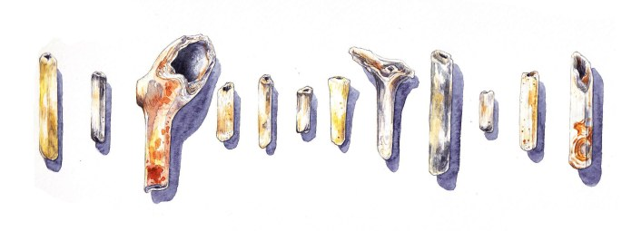 Pipe remnants from Wapping (pencil and watercolour)